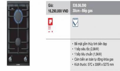 bepgas506590