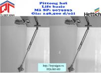 pittonghoi2